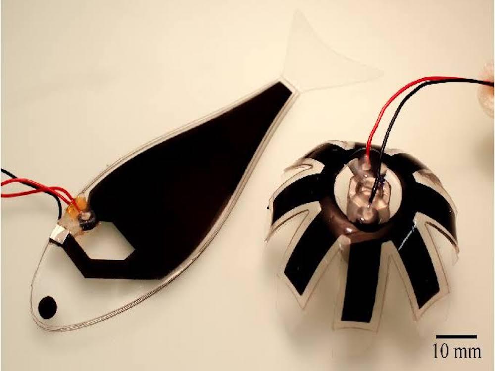 deawaterrobot