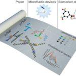 紙ベースのマイクロ流体デバイスに関するレビュー論文