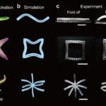 生体模倣のための形状を設計可能な3Dプリントされた磁性オブジェクト
