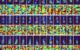 Radar Net